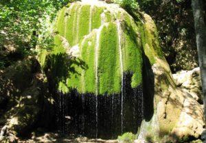летний вид на водопад