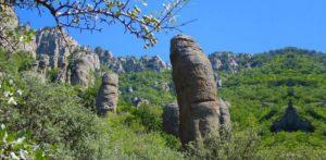 Стоит ли одному отправляться в Долину приведений в Крыму: легенды, история, мистика этого места