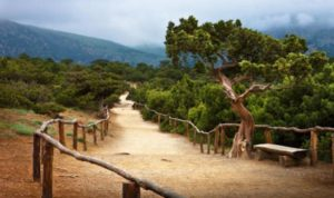 Путешествие по Новому Свету: места, которые стоит увидеть