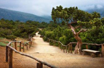 Его высота достигает 473,8 метра над уровнем моря.