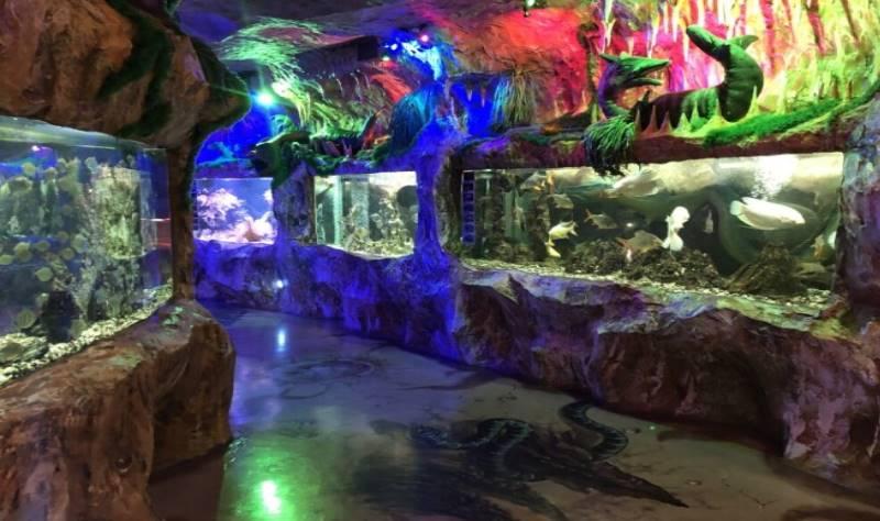 внутри аквариума